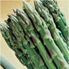 Asparagus Mary Washington