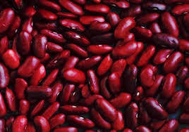 Bean Small Red